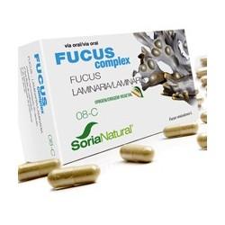 Fucus complex soria natural