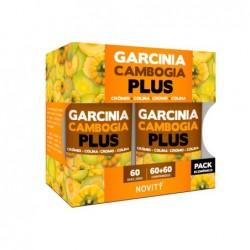 garcinia plus novity