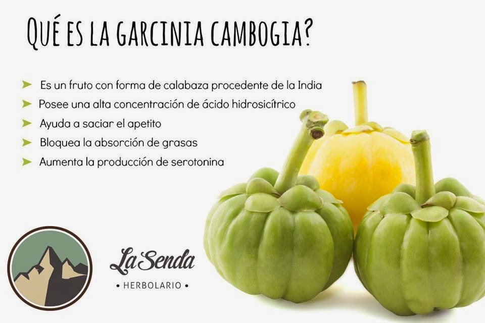 Another name for garcinia cambogia in india