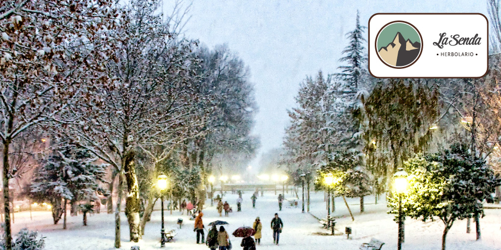 navidad albacete comercio local